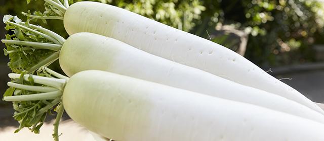 大根を冷凍保存する方法とは?おいしく食べきるテクニック