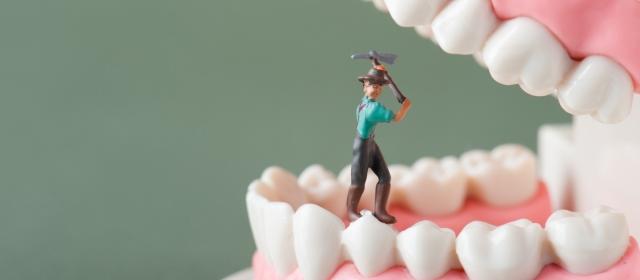 知らなかった!「ミュータンス菌」を、むし歯菌と呼ぶのはどうして?