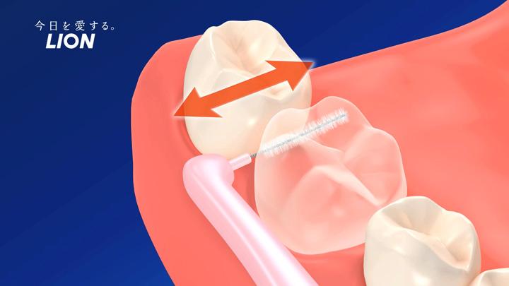 2、3回動かして歯垢を落とす