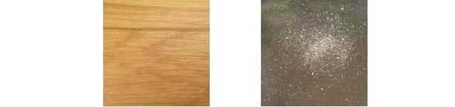 <床の色の違いによるホコリの見え方の違い>
